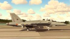 FA-18F v1.0_ARMED_1