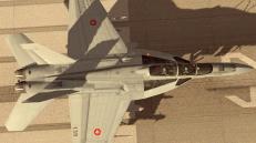 FA-18F v1.0_ARMED_2